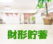 propertyaccumulationsavings